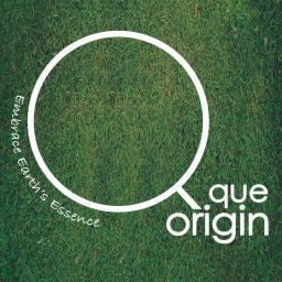 Que Origin Ambassador (2016)